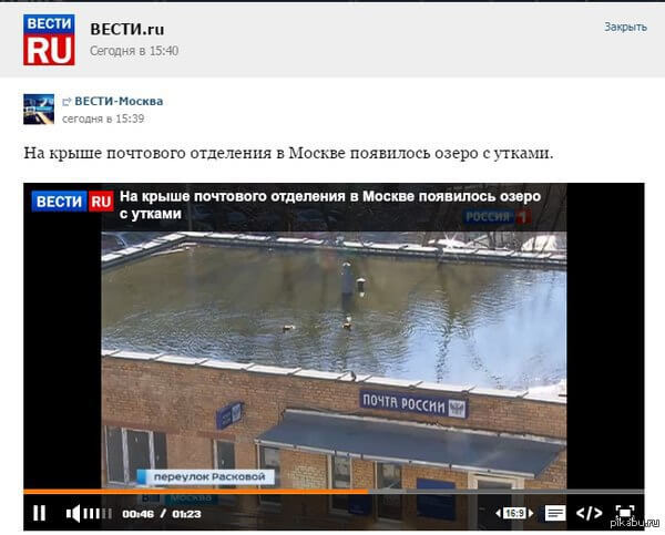 Технологии зеленых городов Скайвэй уже в Москве!