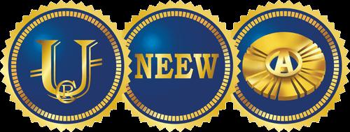 НЭЭМи - Новая Экономическая Эволюция Мира - ребрендинг SWIG
