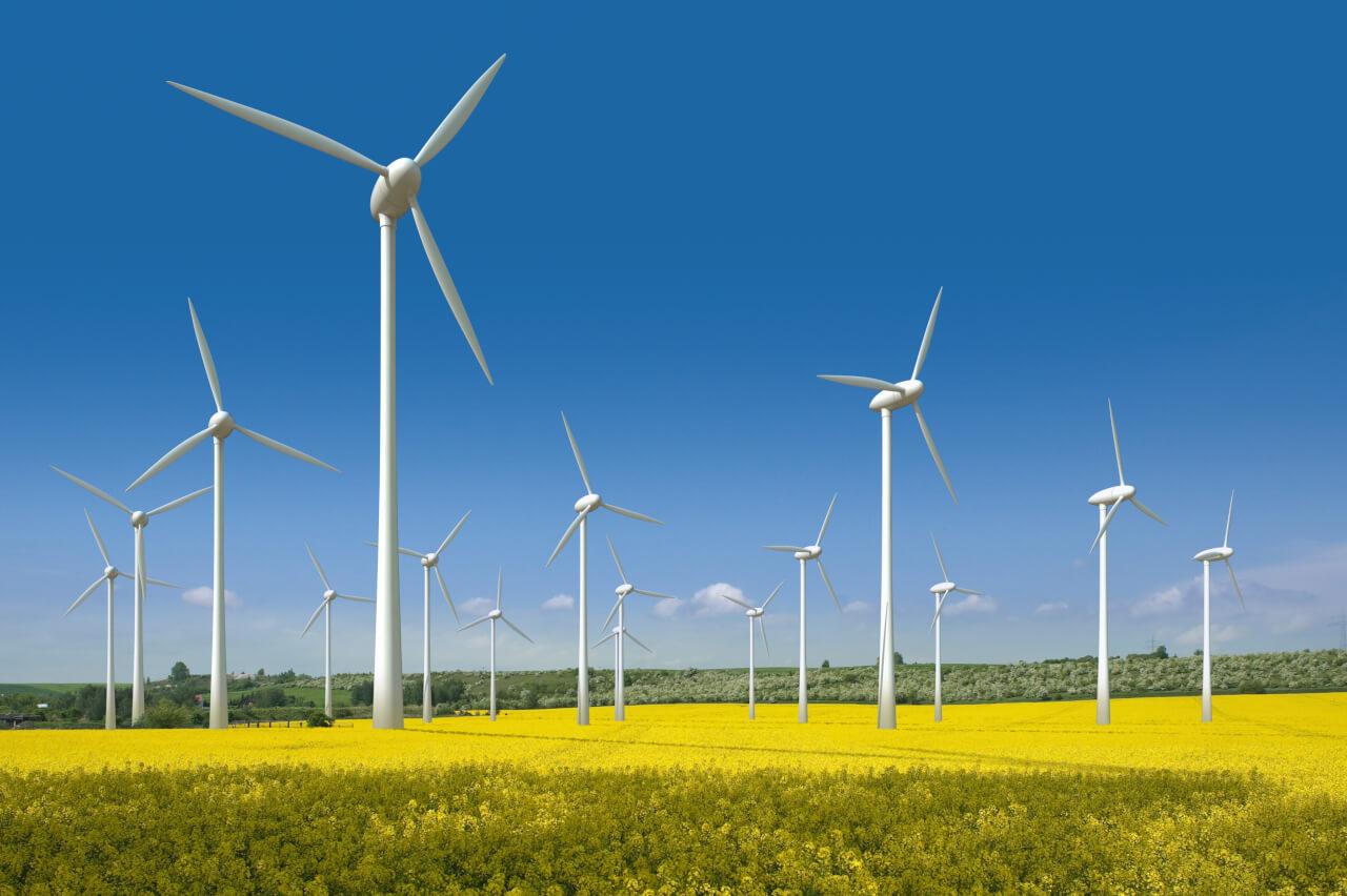 Строим ветряную электростанцию, почувствовав ветер перемен!